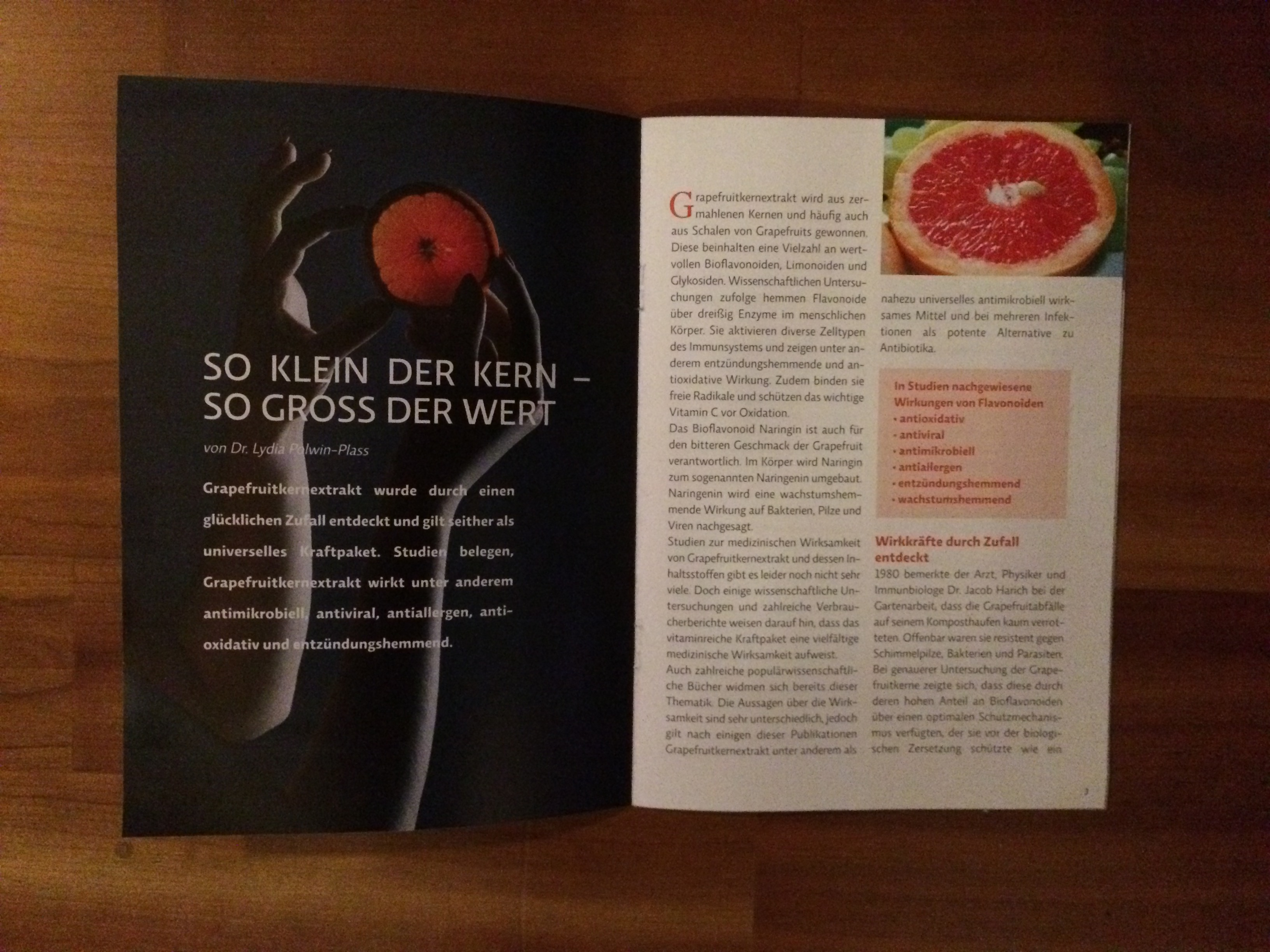 Broschuere_Grapefruitkernextrakt_Lydia Polwin-Plass